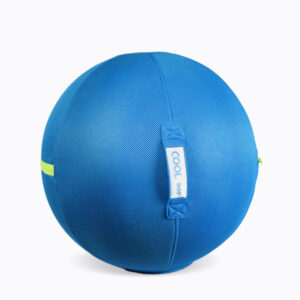Blue Yoga Sitting & Swimming Ball Chair